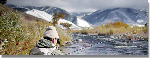 Yellowstone Fly Fishing - The Henry's Fork Fishing Report